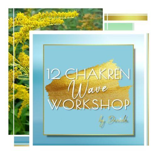 12 Chakren Wave Workshop 2021