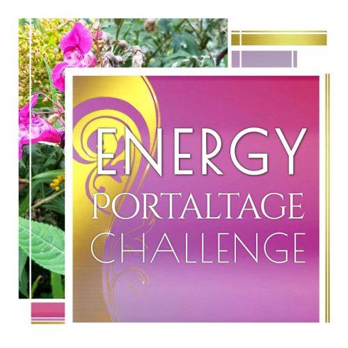 Energy Portaltage Challenge